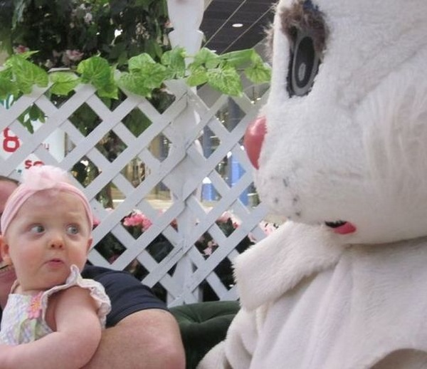 funny easter pics interesting-images
