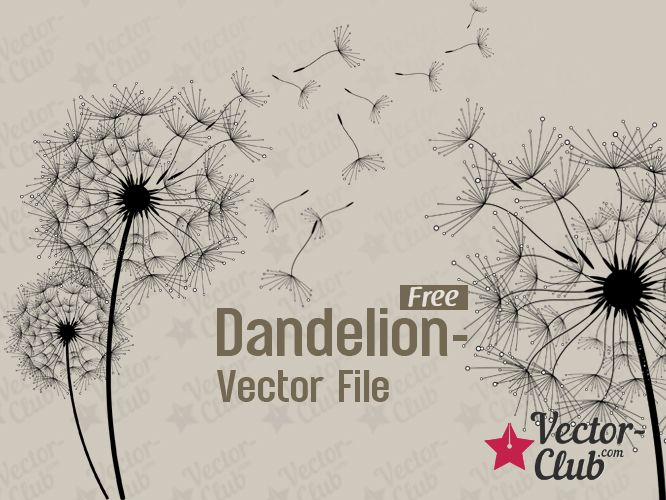 Dandelion - Free Vector File