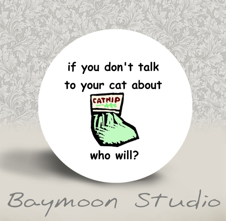 If you don't talk to your cat about nip, who will?: 125, Pinback Buttons Funny, Inch Round, Etsy, Stuff, Baymoonstudio, 1 25 Inch