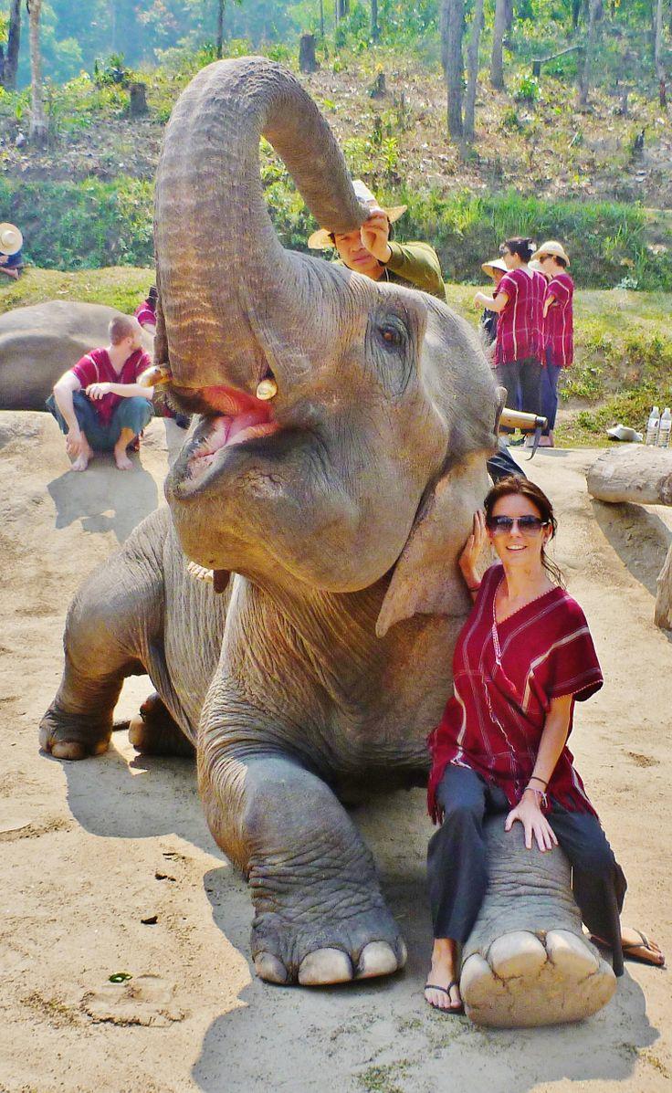 Chang Mai, Thailand - Elephant Trainer