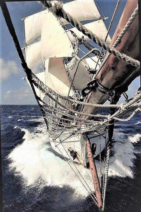 Forward we go, sailing toward treasured adventure!