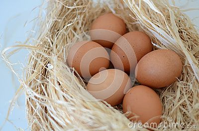 Eggs in a nest over white background