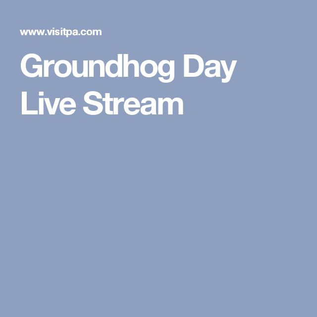 Groundhog Day Live Stream
