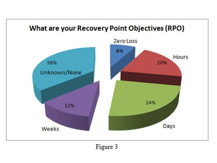Figure 3: What are your Recovery Point Objectives (RPO)