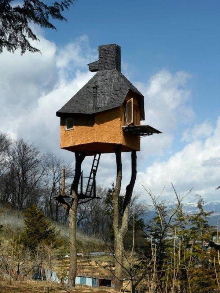 Takasugi an pavillon de th trop haut maison - Architecte japonais ...