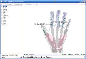 La acupuntura pantalla del maestro Tung