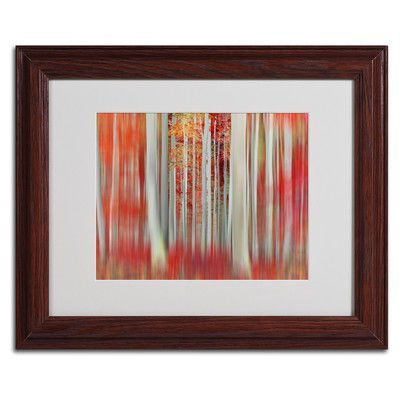 """Trademark Art """"We Rolled Together"""" by Philippe Sainte-Laudy Framed Photographic Print Size: 11"""" H x 14"""" W x 0.5"""" D, Frame Color: Brown"""