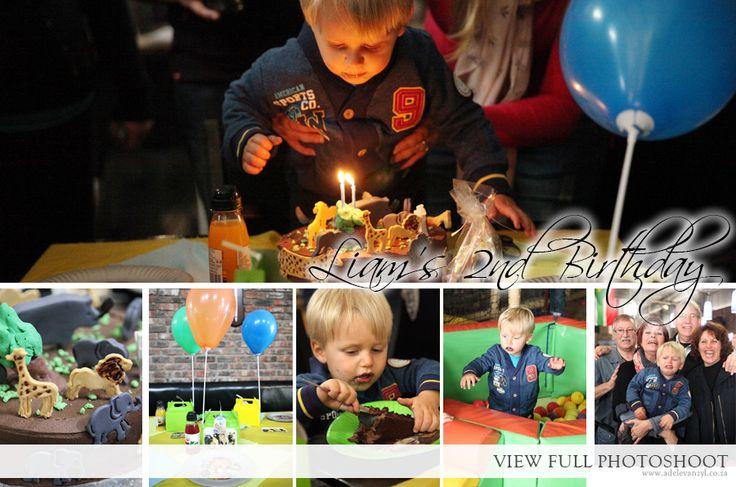 2 Year Birthday Party