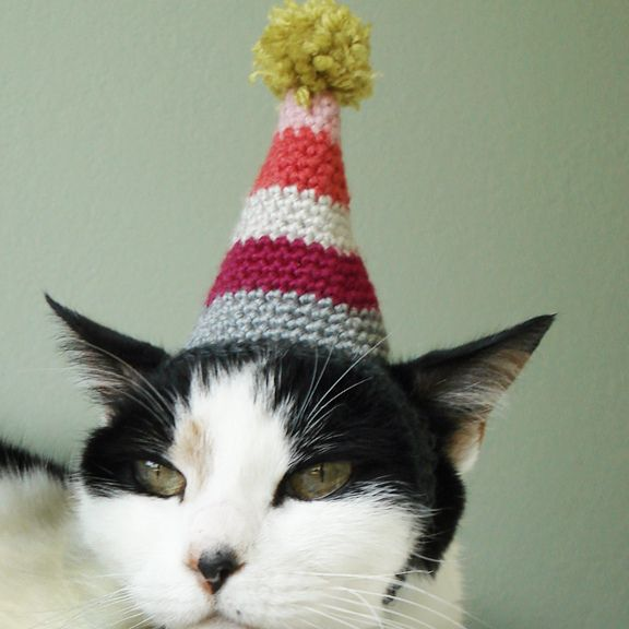 Crochet Cat Hat : Pet Birthday Party Hat pattern by Lindsay Smith