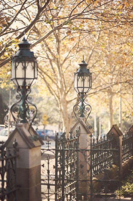 Autumn in Sydney, Australia  (via beautifully, suddenly: sydney | autumn is a second spring …)