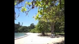 Praia do Pulso.  Wilson Luiz Negrini de Carvalho - YouTube #Ubatuba #Brasil #Brazil #praia #viagem #beach #litoral #playa #plage #turismo #natureza #PraiaDoPulso