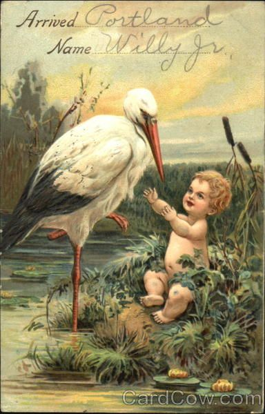 Baby with Stork Babies