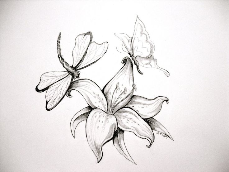 Lily Tattoo Line Drawing : Black and white printmaking lily by