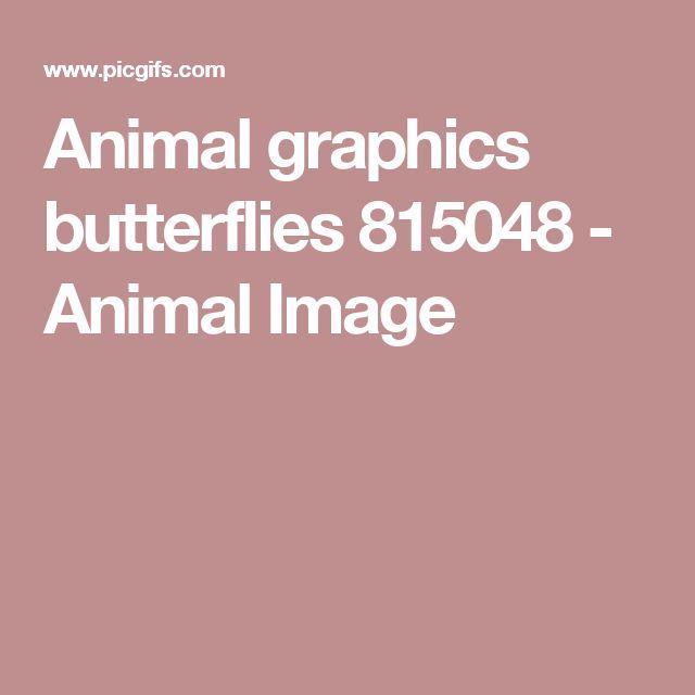 Animal graphics butterflies 815048 - Animal Image