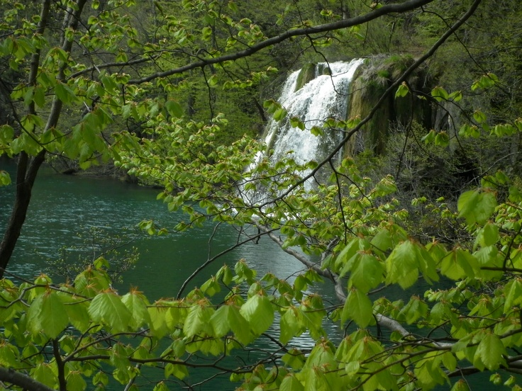 El parque tiene una superficie cercana a las 30.000 hectáreas, 22.000 de ellas cubiertas de bosques. La zona que se puede visitar se encuentra en el centro del parque, son 8 km² de valle poblado de bosques, donde la hidrografía ha conformado un paisaje formado por 16 lagos de diferente altitud comunicados por 92 cataratas y cascadas. La vegetación se compone en un 90% de hayas.
