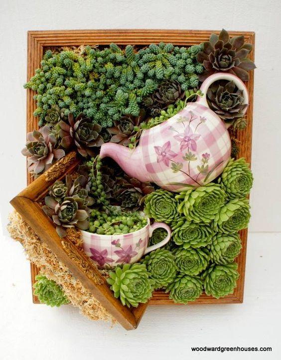 Les 25 Meilleures Id Es Concernant Arrangements De Plantes Grasses Sur Pinterest Plantes