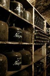 Niepoort Cellars in Porto