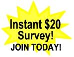 Paid Surveys Online.