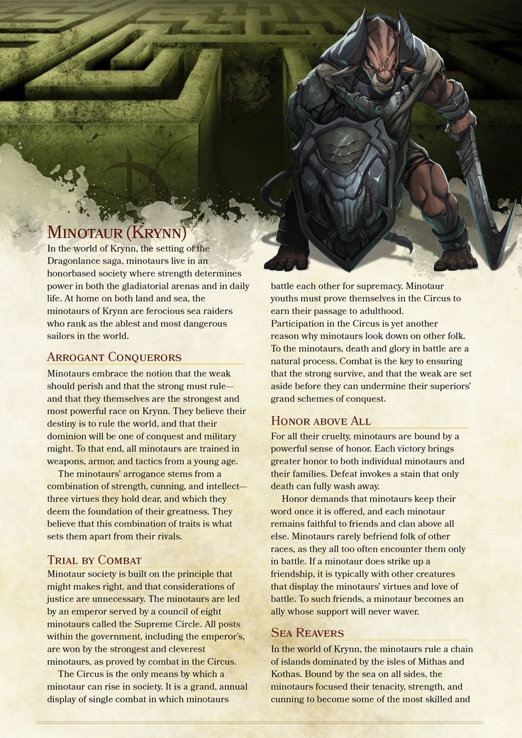 how to create a player in dnd