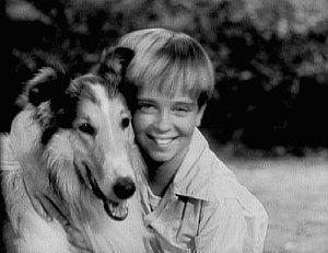 """""""Lassie's Great Adventure"""" was released."""