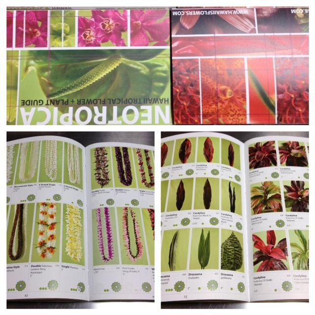 【国内未発売・予約受付中】ハワイで生産されている花の本 NEOTROPICA(9月下旬~10月上旬発送)【楽天市場】