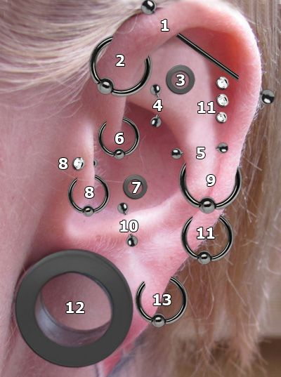 Ohrpiercing Arten wie Industrial, Forward Helix, Inner Conch, Rock Piercing, Anti Helix, Daith, Conch, Tragus, Orbital, Anti Tragus, Helix, Lobe, Upper lobe