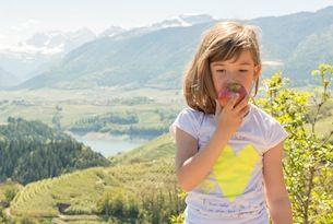 Val di Non, sentiero dedicato alla mela