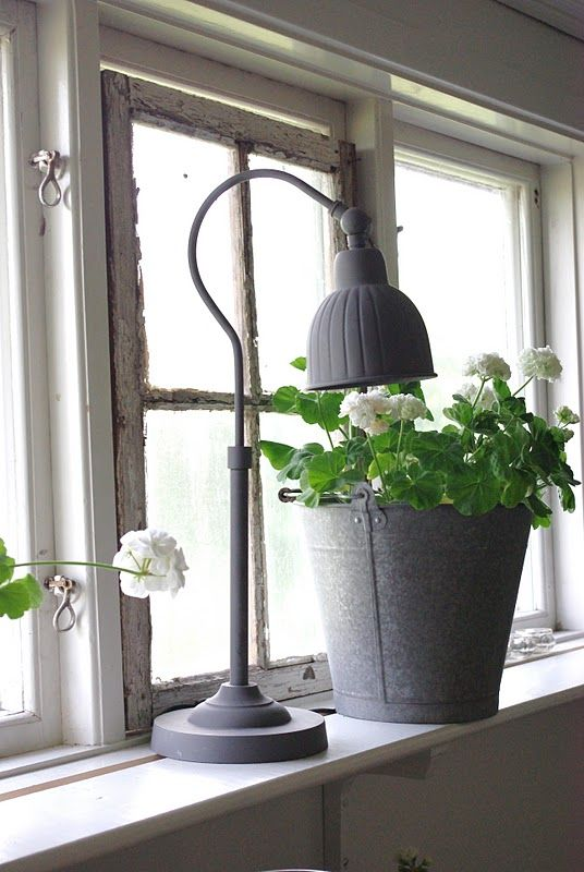 Zinc, love the bucket of geraniums and really want the lamp!