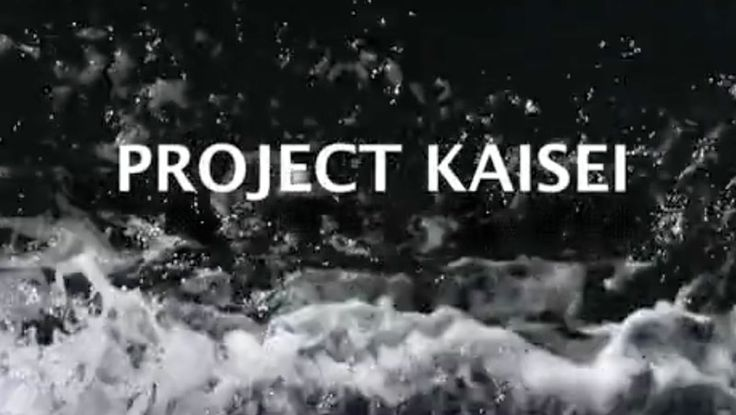 WEBSITE: Project Kaisei is the ocean clean-up initiative of Ocean Voyages Institute, a non-profit organization based in San Francisco. It was established to focus on major ocean clean-up and to raise awareness regarding the global problem of marine debris/ocean trash. Since its inception in 2009, Project Kaisei heralds the need for our ocean ecosystem to recover and takes action both on land and in the sea.