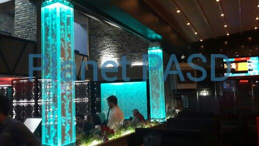 #planetpasd #dekorasyon #decorations #bubblewall #baloncukduvarı #blueworld #okyanus #ocean #pool #water #waterdecor #waterwall #suduvarı #superdesi #tatlısuakvaryumu #ofis #watercurtain