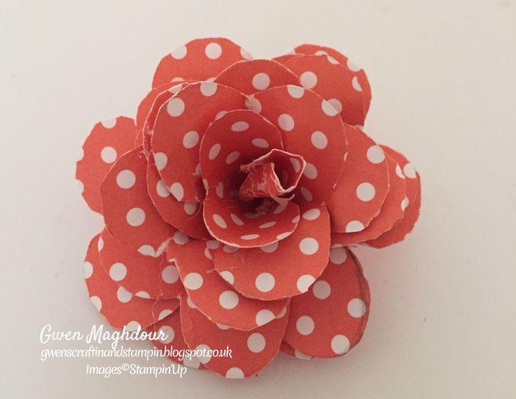 Paper Rose using Subtles DSP stack.