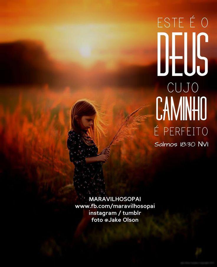 """"""" Este é o Deus cujo caminho é perfeito Salmos 18:30 NVI """""""