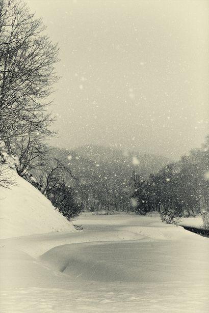 "Japanese poem Haiku by Issa KOBAYASHI (1763~1828) ""Looking delicious / the snow falling softly / softly"""