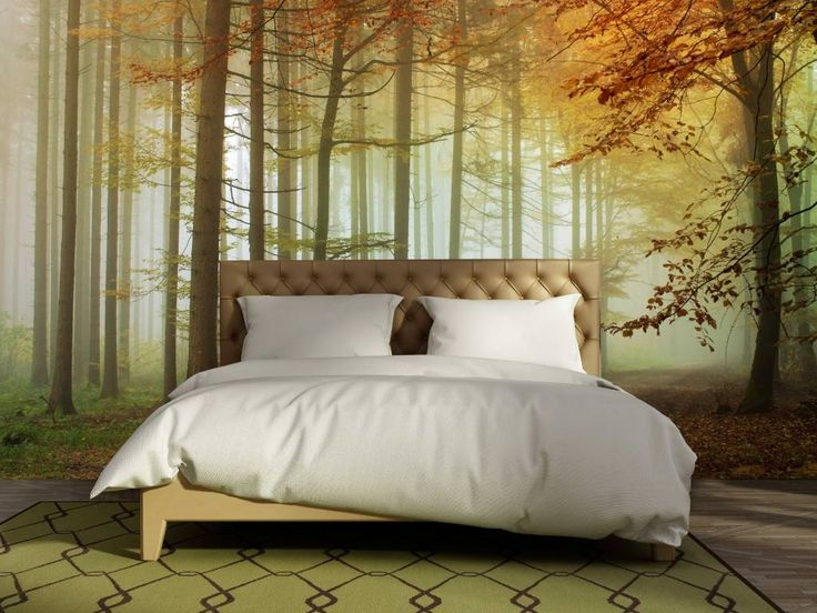Imagine yourself in an oasis of peace with this beautiful Mural Forest sunset Autumn Forest This gives your bedroom or living room directly a…