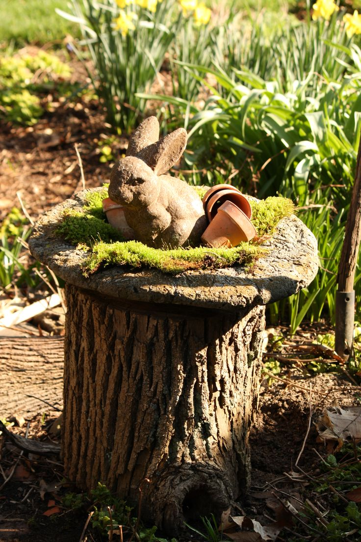 81 best tree stump ideas images on pinterest fairies for Tree trunk slice ideas