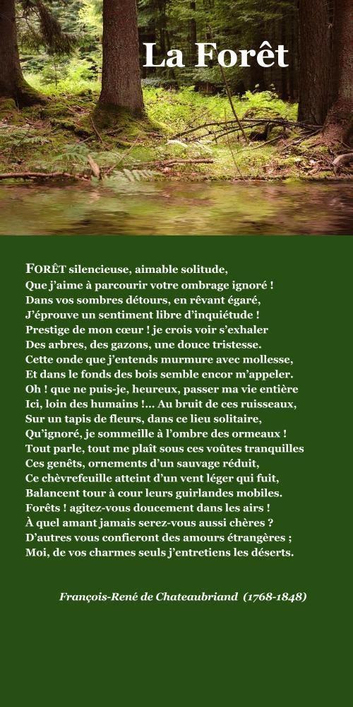 Chateaubriand, La Forêt | À la française …