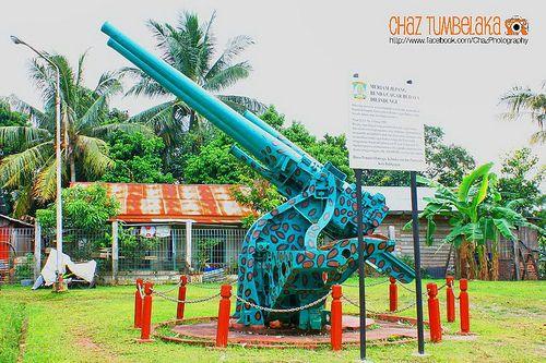 Dual Canon Gun