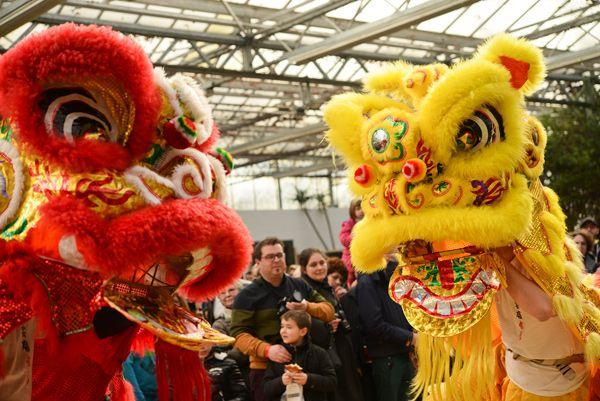 \\ Lu Yun Ling Wushu // Kung Fu Wushu / Sanda / Tai Chi / Danse du Lion / Belgique - Hainaut