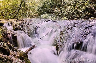 Miniwaterfall - Download From Over 57 Million High Quality Stock Photos, Images, Vectors. Sign up for FREE today. Image: 89698082