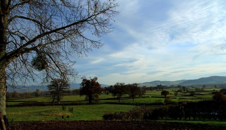 La Comelle, Morvan, Bourgogne