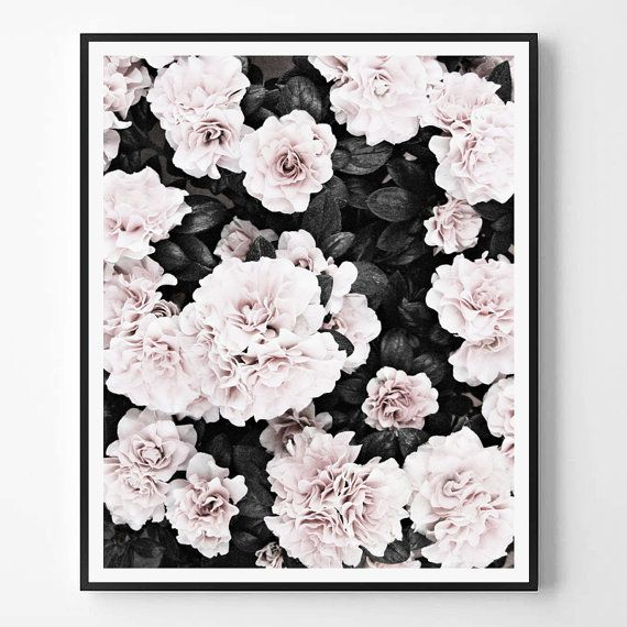 Rose Print Black and white Pink Photo Fashion by ScandiHomeDesign