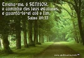 Resultado de imagem para provérbios bíblicos de motivação