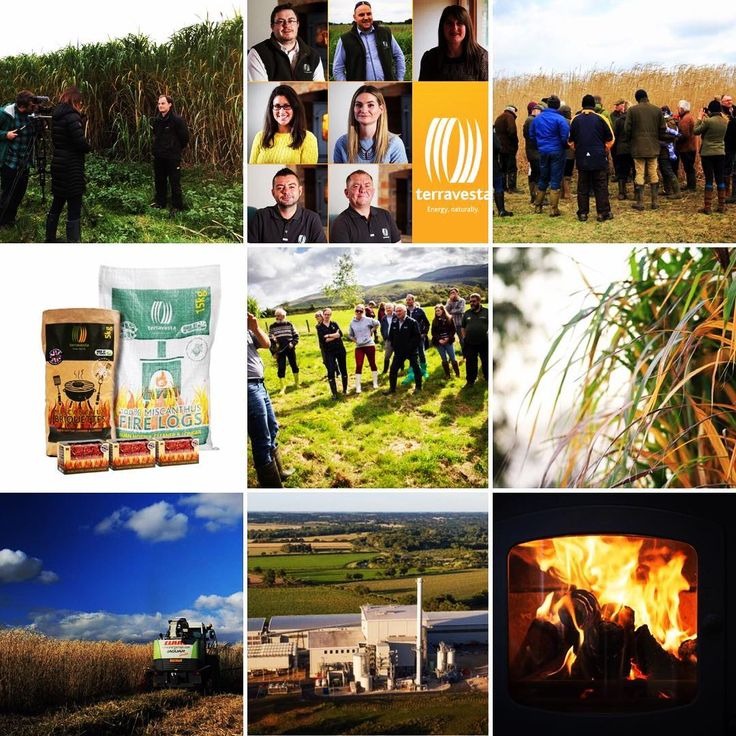 Happy New Year to all friends of Terravesta! 2018 is our most ambitious yet and as we continue to forge ahead championing #Miscanthus as a truly sustainable stepping stone towards addressing climate change . . . . . . #Miscanthus #FarmWalks #Farming #farm #farmer #farmpicsdaily #agriculture #renewableenergy #eco #sustainable #biomass #energy #farmphotographdaily #backbritishfarming #farm365 #briquettes #heatlogs #firestarters #ecofuel #climatechange #globalwarming #2017bestnine #2018…
