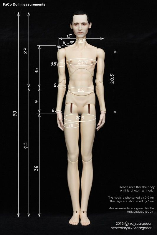 FaCo Doll 70 male body measurements by scargeear on DeviantArt