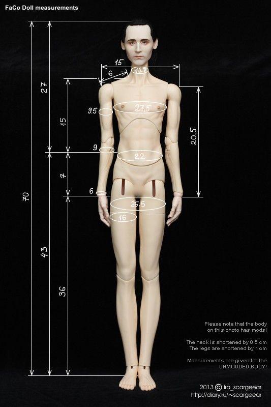FaCo Doll 70 male body measurements by scargeear on DeviantArt