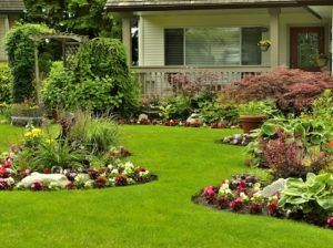 Looking for ways to hide your septic system? Learn the Do's and Don'ts of How To Disguise Septic Tank covers.