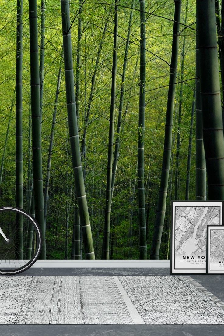 bamboo wall covering chalk bamboo bamboo poles for building best 25 bamboo wall ideas on pinterest bamboo garden bamboo screening and bamboo garden fences