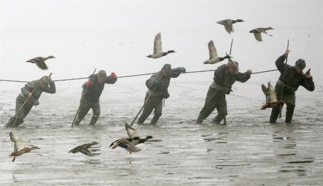 Image: Fishermen pull a net with fish from the lake of Svet at the south Bohemian town of Trebon (© PETR JOSEK//Reuters)
