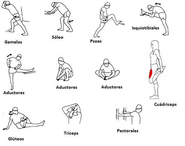 Actividad física y salud  IES Juan de Lucena: TABLA DE EJERCICIOS GIMNÁSTICOS PARA EL CALENTAMIE...
