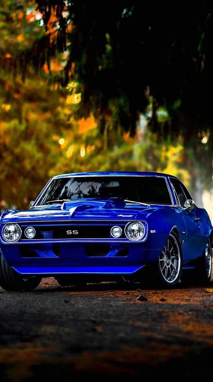 1323 Best Images About 67 Amp 68 Camaros On Pinterest